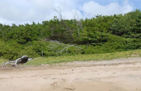 LD156: Beachfront land at Galby St. David