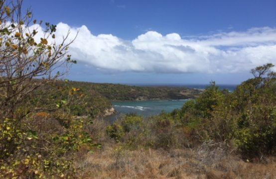 LD181: Lot #59 – Flat Land with Sea View, 21,479sqft, Belle Isle, St. David