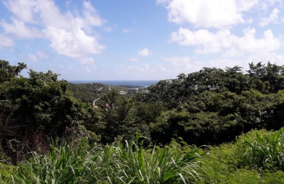 LD172: Fabulous Views from Land Located at Westerhall Heights