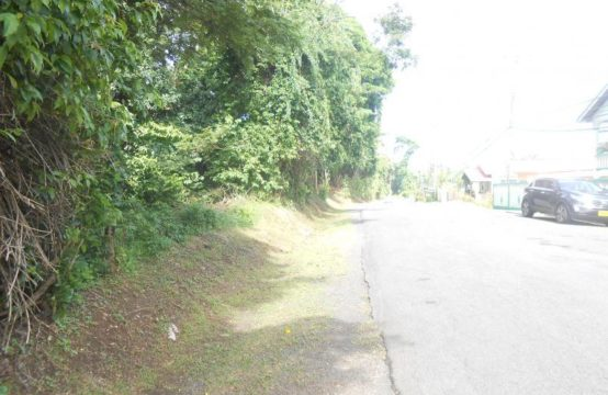 CL004: 2 Acre of Land at Paradise Main Road, St. Andrew