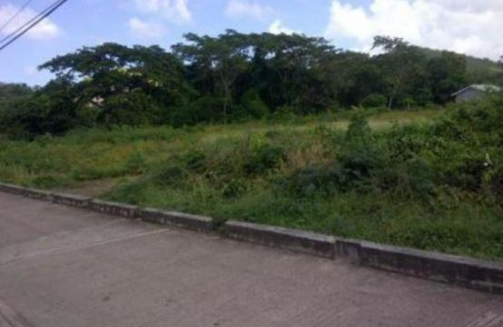 CL003: Flat land for investment at Calliste, St. George